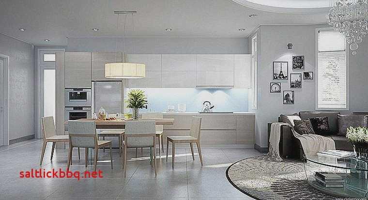 Idee de decoration salon cuisine