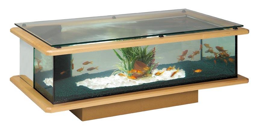 Table basse aquarium occasion