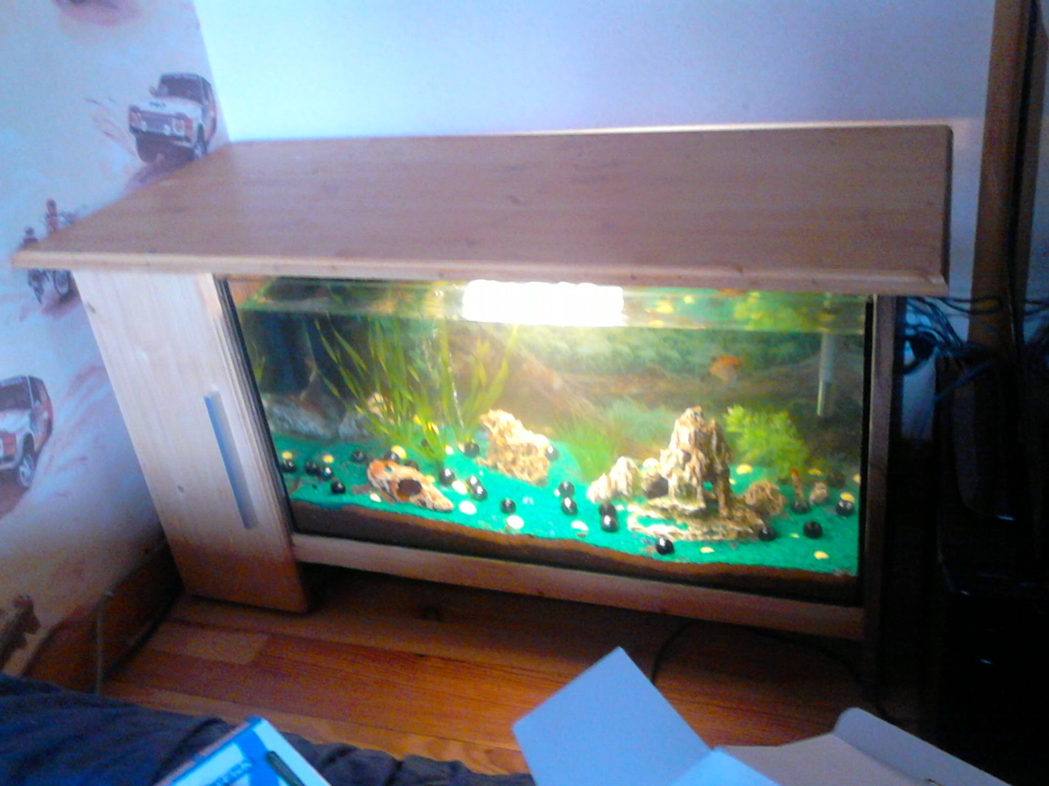Table basse aquarium d'idées